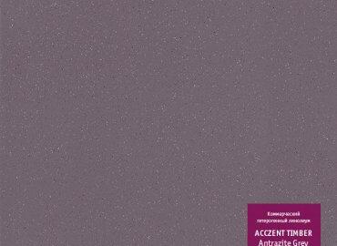Acczent Universal Antrazite Grey